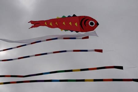 big-fish4