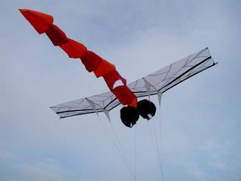 dragonfly-kite5