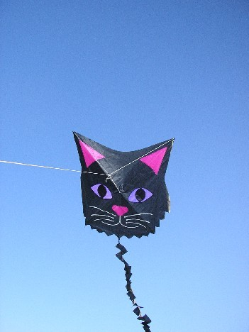 black-cat-kite3