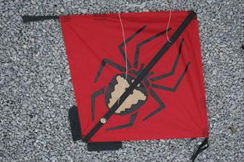 kirk-spider4
