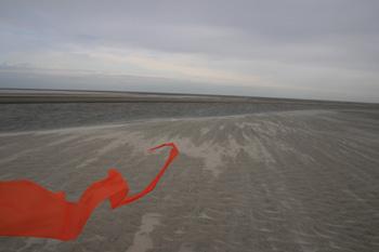 Orangener Wind2